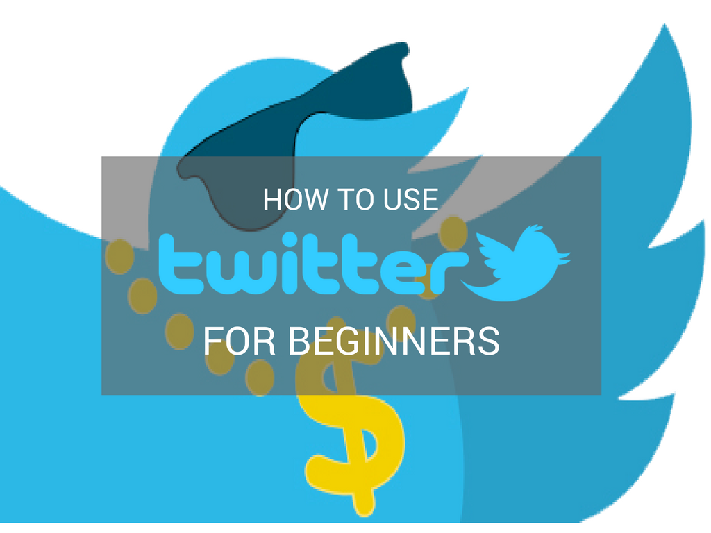 how to use twitter for beginners pdf